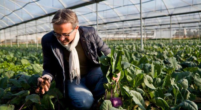 Nelle serre la coltura biodinamica batte bio e convenzionale