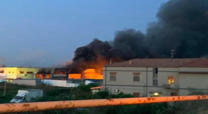 Gli incendi dolosi minacciano la IV Gamma nella Piana del Sele