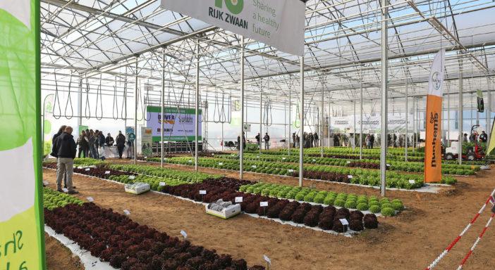 Successo per Orticoltura in campo, l'evento dedicato all'agricoltura high tech