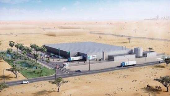 Orticoltura indoor, gli Emirati fanno scuola con Green Factory