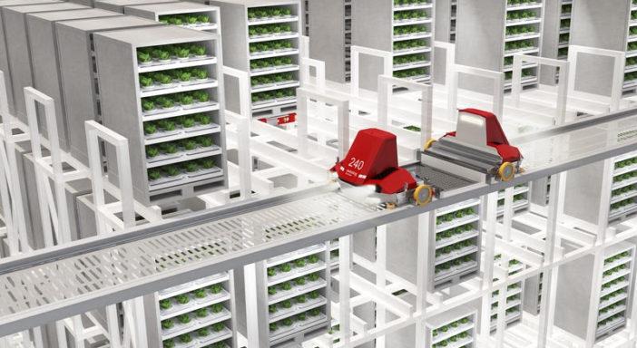 Logistica robotizzata per il vertical farming: progetto di Swisslog