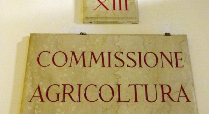 Vertical farming fermo in Commissione Agricoltura